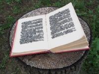 knjiga-na-panju_0.jpg